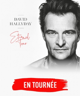 David Hallyday - Éternel Tour