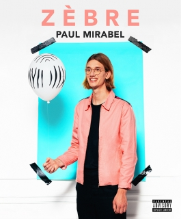 Paul Mirabel - Zèbre